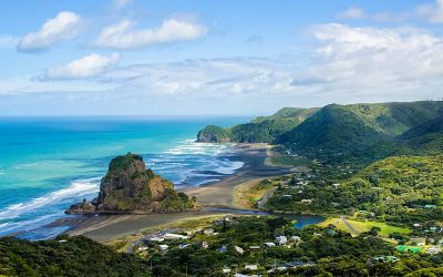 New Zealand Internship